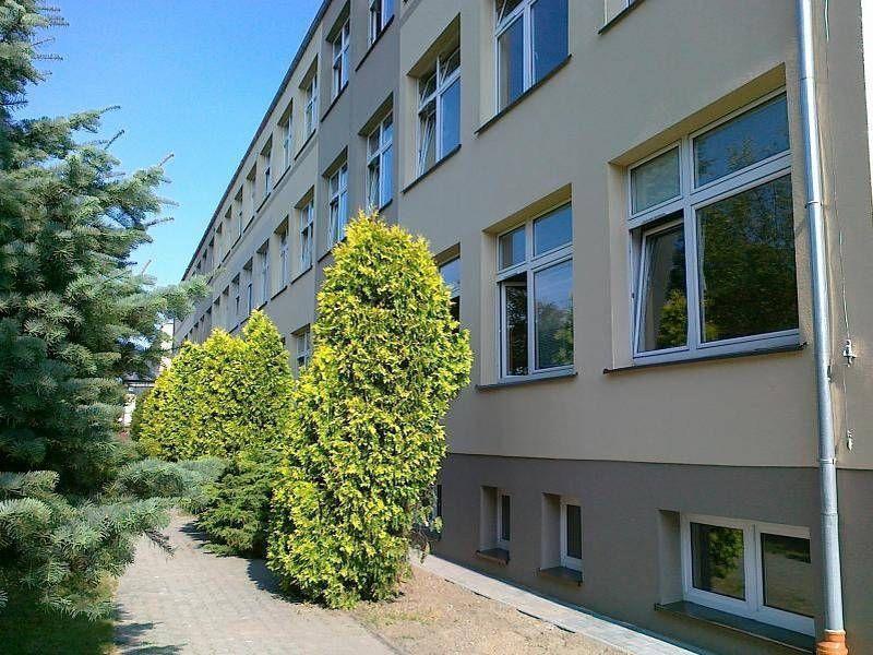 Krzewy pod budynkiem