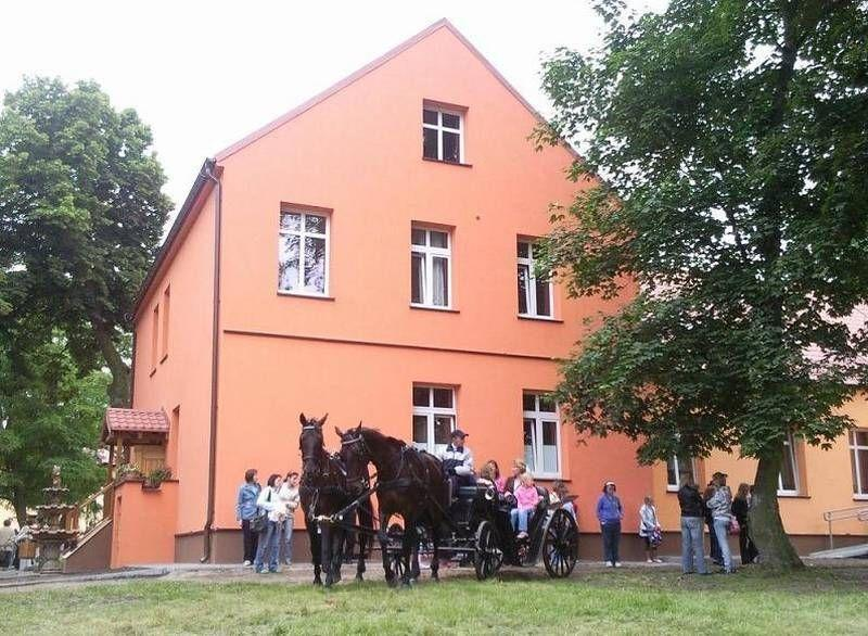 Dwa konie pod budynkiem