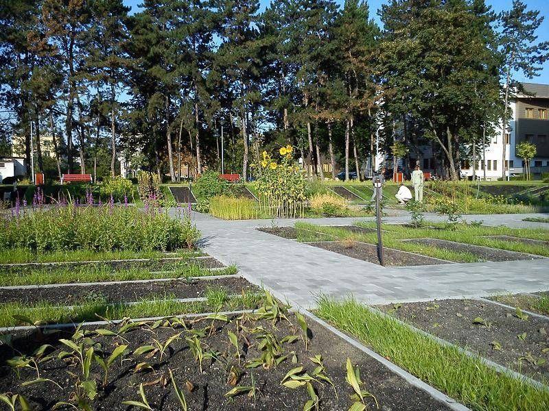 Ogród w mieście 5