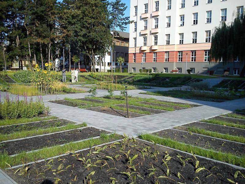Ogród w mieście 3